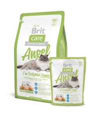 Brit Care CAT ANGEL I`m Delighted Senior