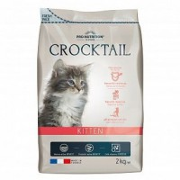 Flatazor CROCKTAIL KITTEN