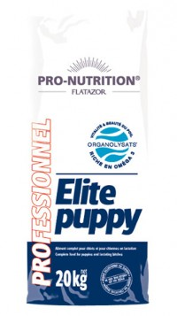 Flatazor ELITE PUPPY